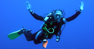 Private Dive Courses and Guidance